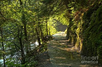 Photograph - Stony Brook Gorge Trail New York by Adam Jewell