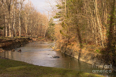 Photograph - Stony Brook by William Norton