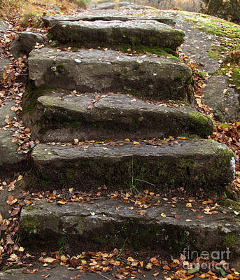 Photograph - Stony Steps by Lutz Baar