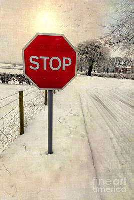 Stop Sign Art Print by Adrian Evans