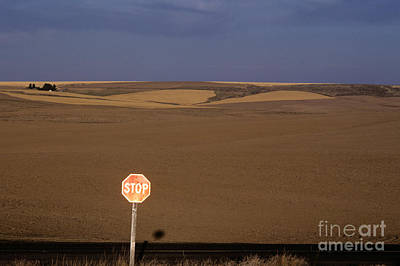 Stop Sign Photograph - Stop Sign by Jim Corwin