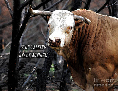 Stop Talking Art Print by Linda Cox