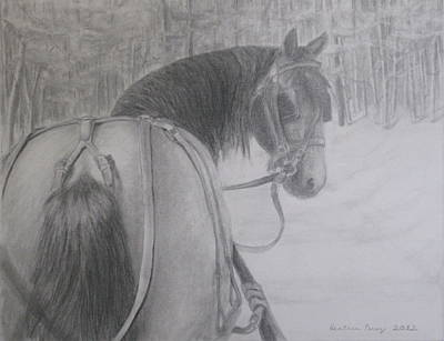 Heather Perez Drawing - Stopping In A Snowy Wood by Heather Perez