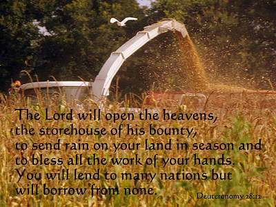 Photograph - Storehouse Of His Bounty by Sheri McLeroy