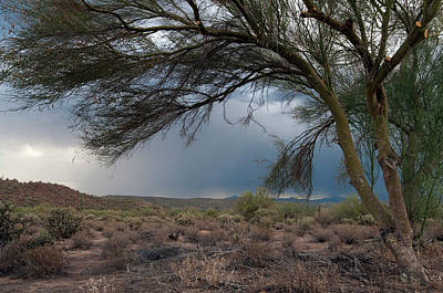 Photograph - Storm Approaching by Tam Ryan