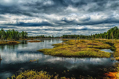 New Jersey Pine Barrens Photograph - Storm At Franklin Parker Preserve - Pinelands by Louis Dallara