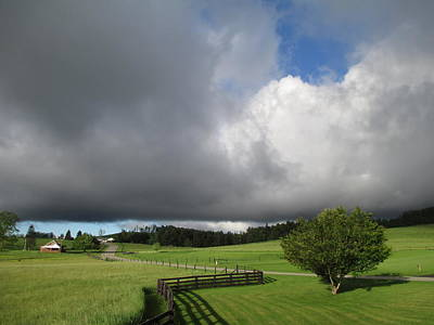 Photograph - Stormy Weather by Diannah Lynch