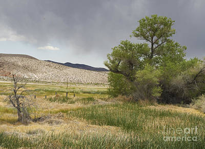Photograph - Storm Clouds Over Torrance Ranch by Dan Suzio