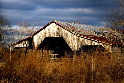 Storm-damaged Barn Original by Timothy Fontenot