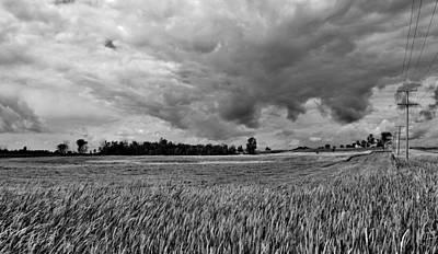 Storm Field - Canada Art Print