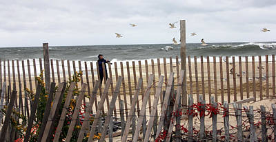 Photograph - Storm Gulls by Mary Haber