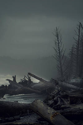 Washington Driftwood Beach Fog Wall Art - Photograph - Storm Aftermath by Yulia Kazansky