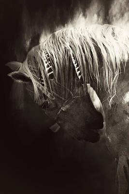 Indian Pony Photograph - Storm by Lyndsey Warren