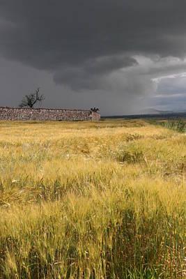 Apan Photograph - Storm On Yellow Plain by Raul Ortiz-Pulido