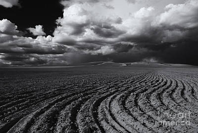 Photograph - Storm Path by Mike  Dawson