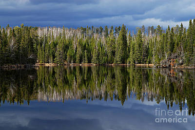 Storm Reflections Art Print by Larry Ricker