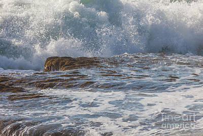 Photograph - Storm Waves In Acadia by Susan Cole Kelly