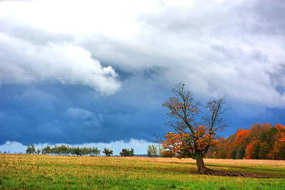 Photograph - Stormy Autumn by Emily Stauring