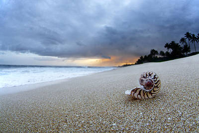 Sunrise At The Beach Photograph - Stormy Dawn by Sean Davey