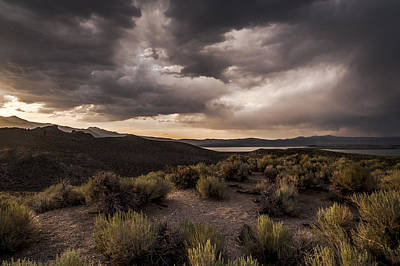 Photograph - Stormy Day At Mono Lake by Cat Connor