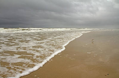 Stormy Day On Topsail Art Print by Betsy Knapp