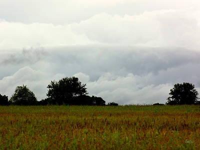 Photograph - Stormy by Deborah  Crew-Johnson