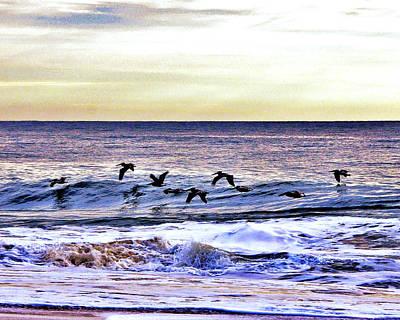 Photograph - Stormy Flight by Kim Bemis