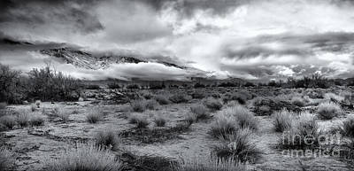 Mountain Royalty-Free and Rights-Managed Images - Stormy Morning by Jennifer Magallon