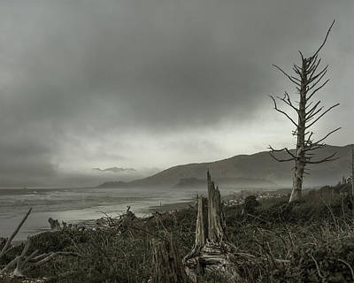 Stormy Oregon Coast Art Print by Shawn St Peter