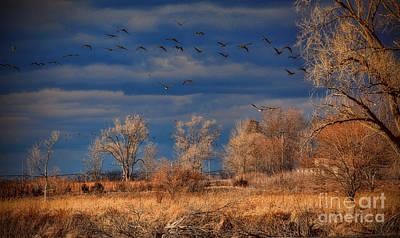 Photograph - Stormy Rural Nebraska by Elizabeth Winter
