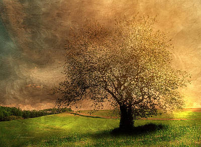 Tree Art Mixed Media - Stormy Weather by Georgiana Romanovna