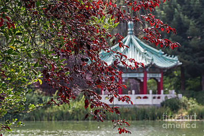 Photograph - Stow Lake Pavilion by Kate Brown