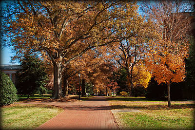 Photograph - Straight Ahead To Richardson Stadium - Davidson College by Paulette B Wright