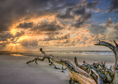 Photograph - Stranded by Steve DuPree