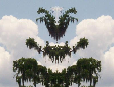 Photograph - Strange Halloween Tree Creature by Belinda Lee