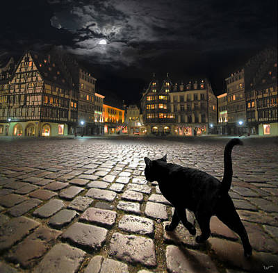 Photograph - Strasbourg's Night by Igor Zenin