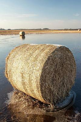 Straw Bales On A Flooded Field Art Print by Ashley Cooper