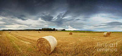 Wheat Field Sky Photograph - Straw Bales Pano by Jane Rix