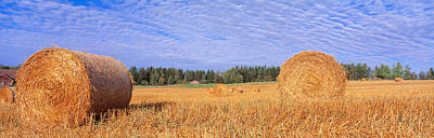 Bale Photograph - Straw Rolls, Sweden by Panoramic Images
