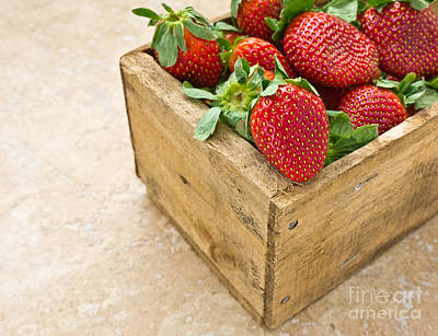 Photograph - Strawberries by Edward Fielding