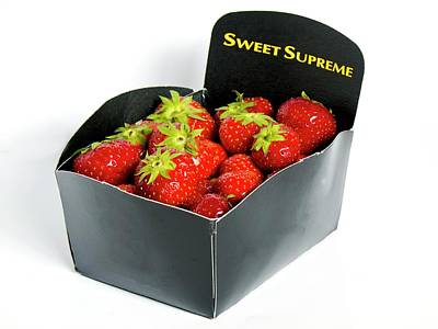 Strawberries In Display Carton Print by Ian Gowland