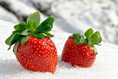 Photograph - Strawberries On Ice  by Olivier Le Queinec