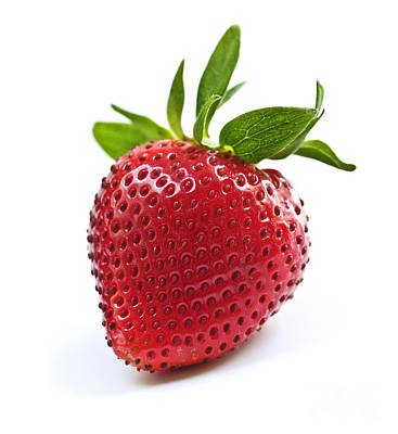 Strawberry On White Background Print by Elena Elisseeva