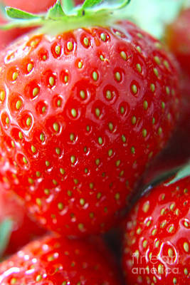 Photograph - Strawberry by Terri Waters