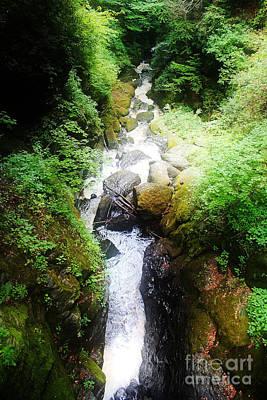 Photograph - Stream At Buskill Falls by Paul Cammarata