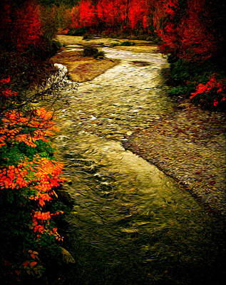 Photograph - Stream by Bill Howard