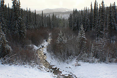 Photograph - Stream In Denali by Jon Emery