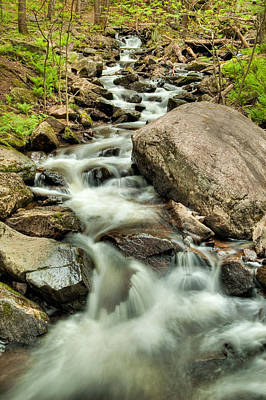 Stream In Gatineau Park Art Print