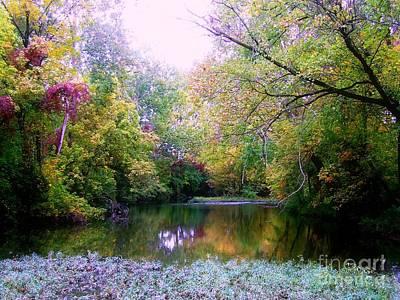 Photograph - Stream In Green An Colors by Scott B Bennett