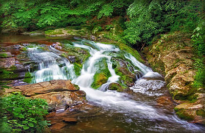 Photograph - Stream In The Smokies by Carolyn Derstine